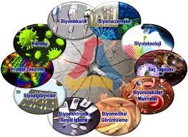 ترتيب الجامعات التركية - هندسة طبية حيوية